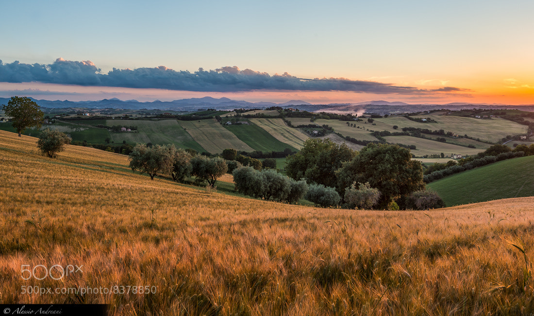 Photograph Viewpoint on Marche by Alessio Andreani on 500px