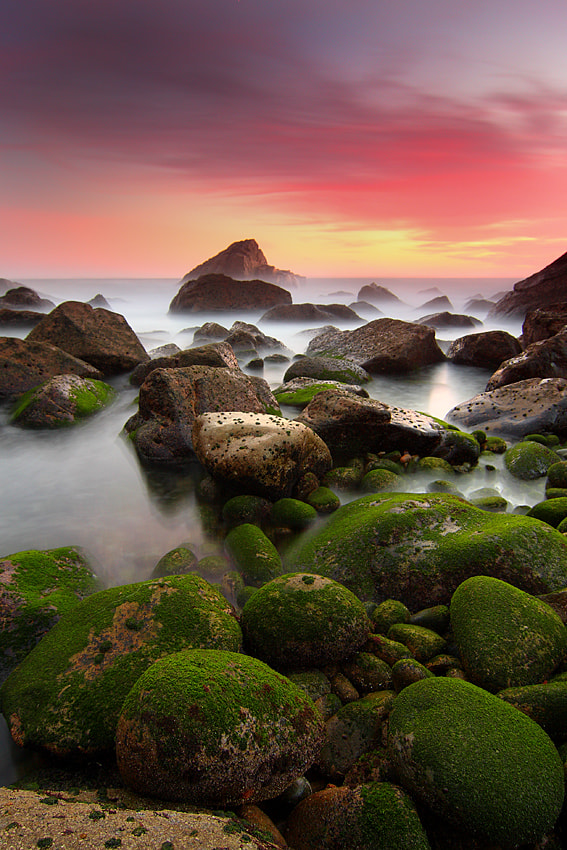 Photograph Green before red by Paulo Rocha on 500px