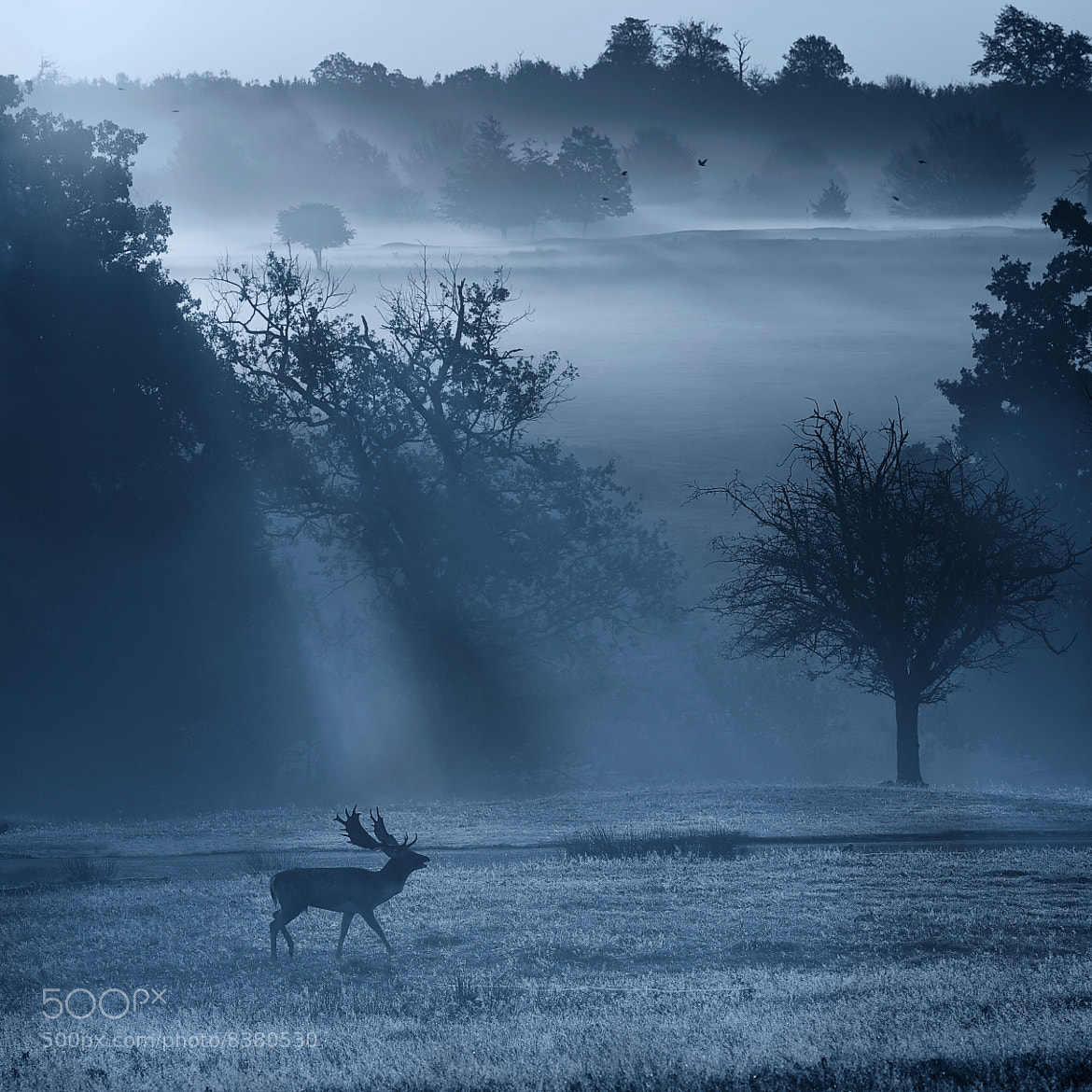 Photograph blue square by Mark Bridger on 500px