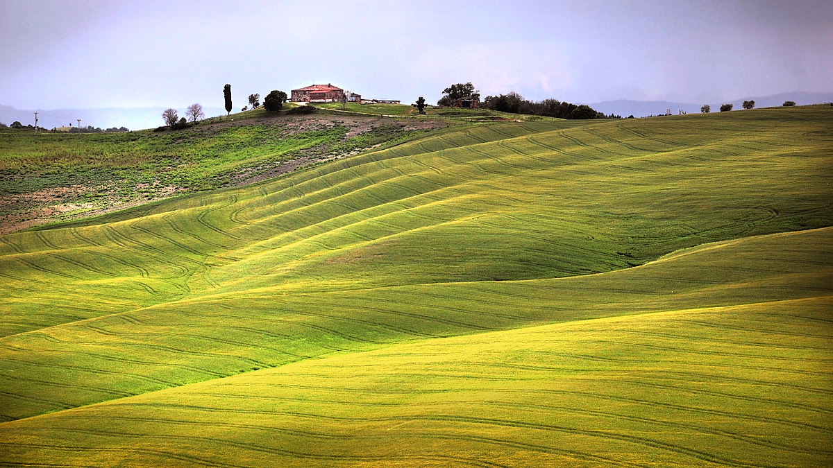 Photograph Tuscany by Wim Peeters on 500px