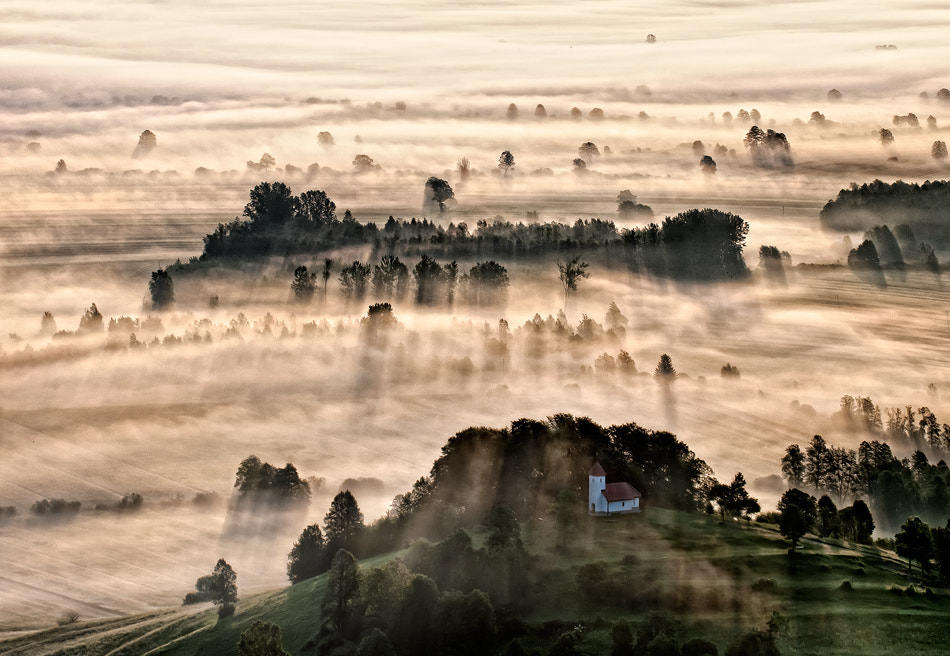 Photograph Misty morning by Aleš Komovec on 500px