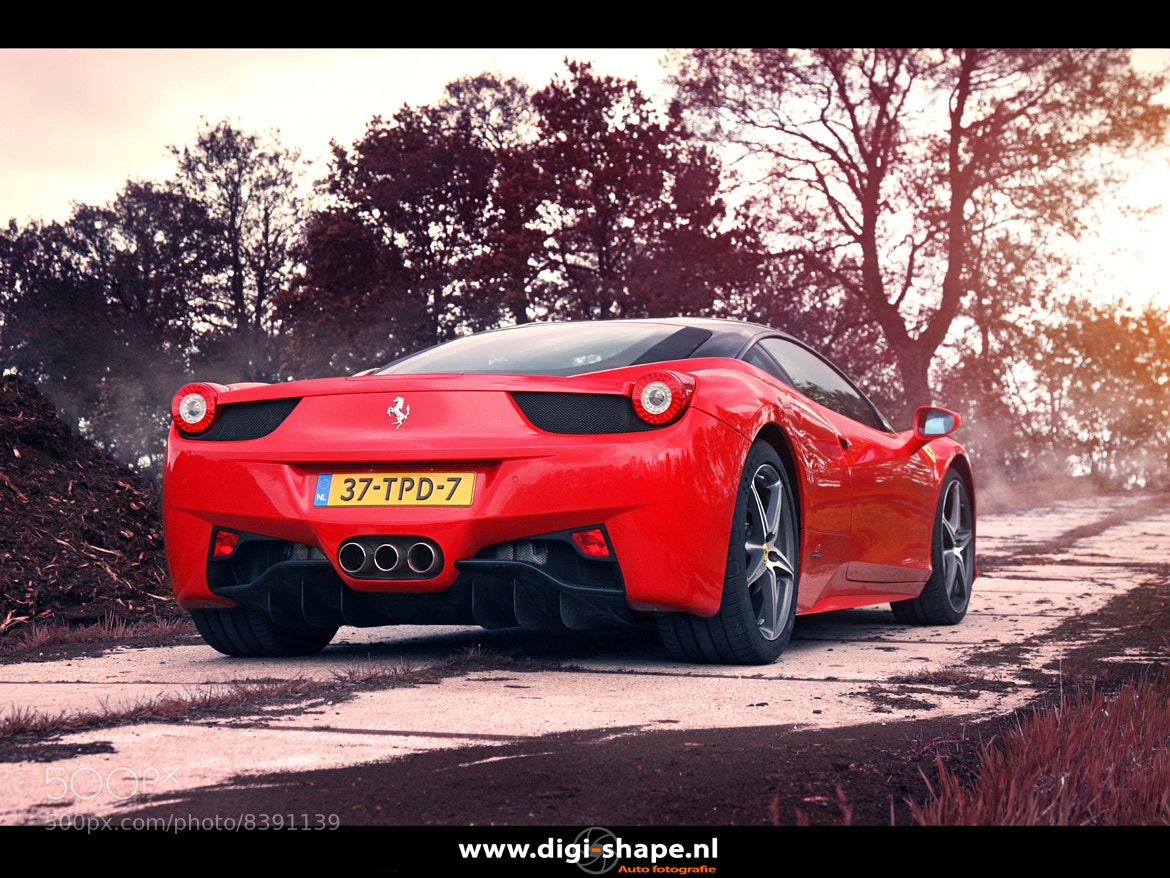 Photograph 458 Italia, peat soil 2 by Peter Terpstra on 500px