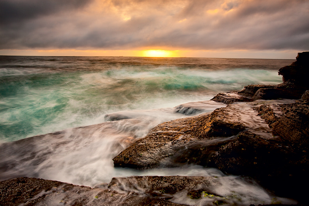 Photograph Terrigal Sunrise by Sacha  Fernandez on 500px