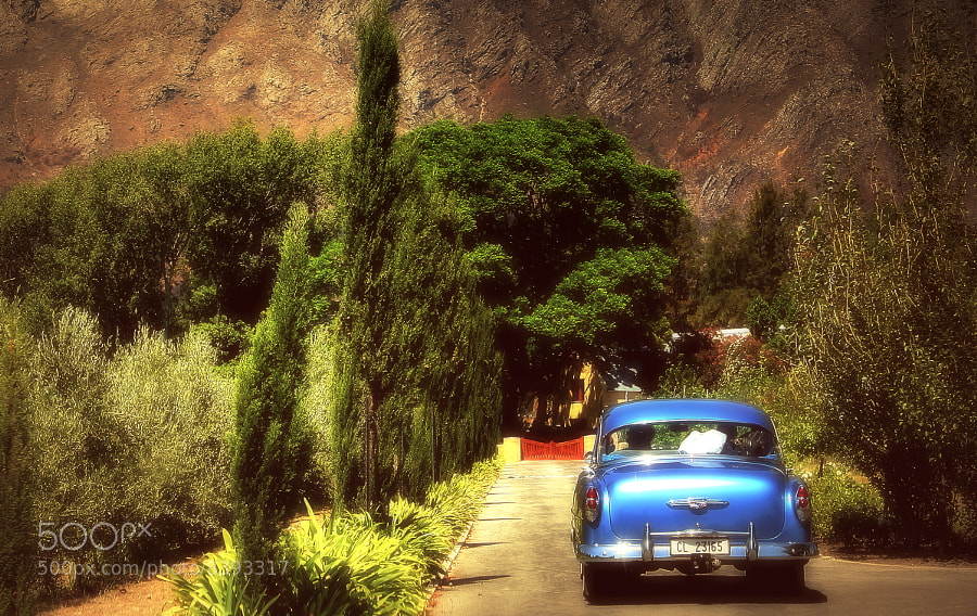 Photograph Traveling by car in the colors of South Africa by Vittorio Chiampan on 500px