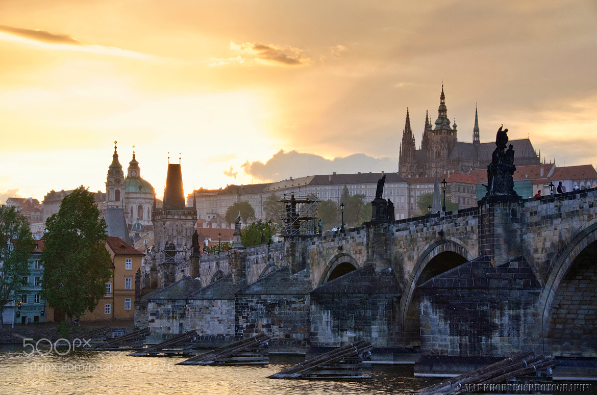 Photograph The Golden Light at Charles Bridge by Mark Bryan  Bordeos on 500px