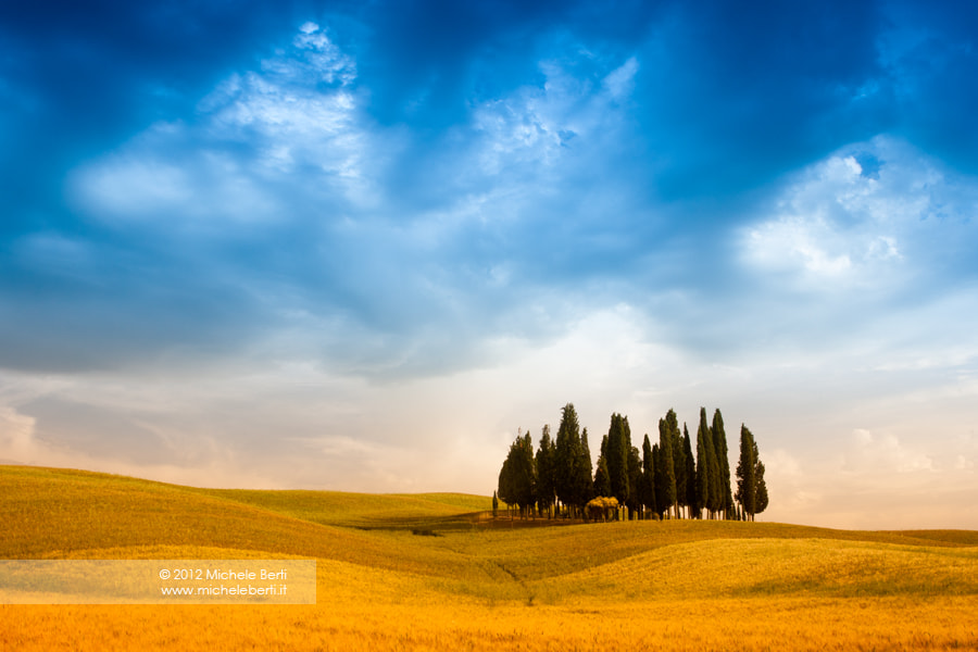 Photograph Cypresses (June 2012) by michele berti on 500px
