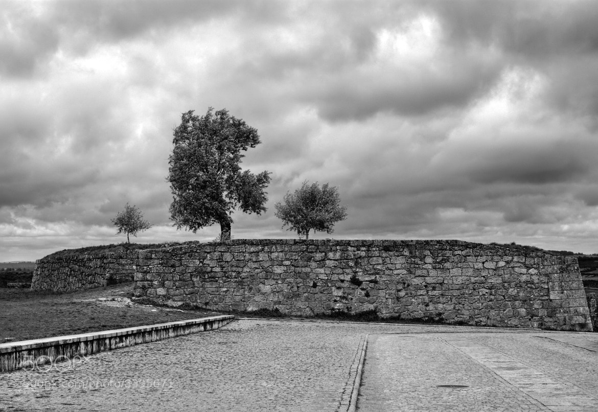 Photograph En Almeida (Portugal) by Manolo P. on 500px