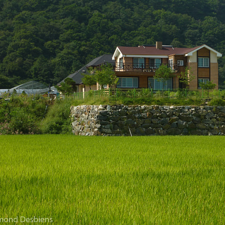 Country House and Rice, Panasonic DMC-ZS3