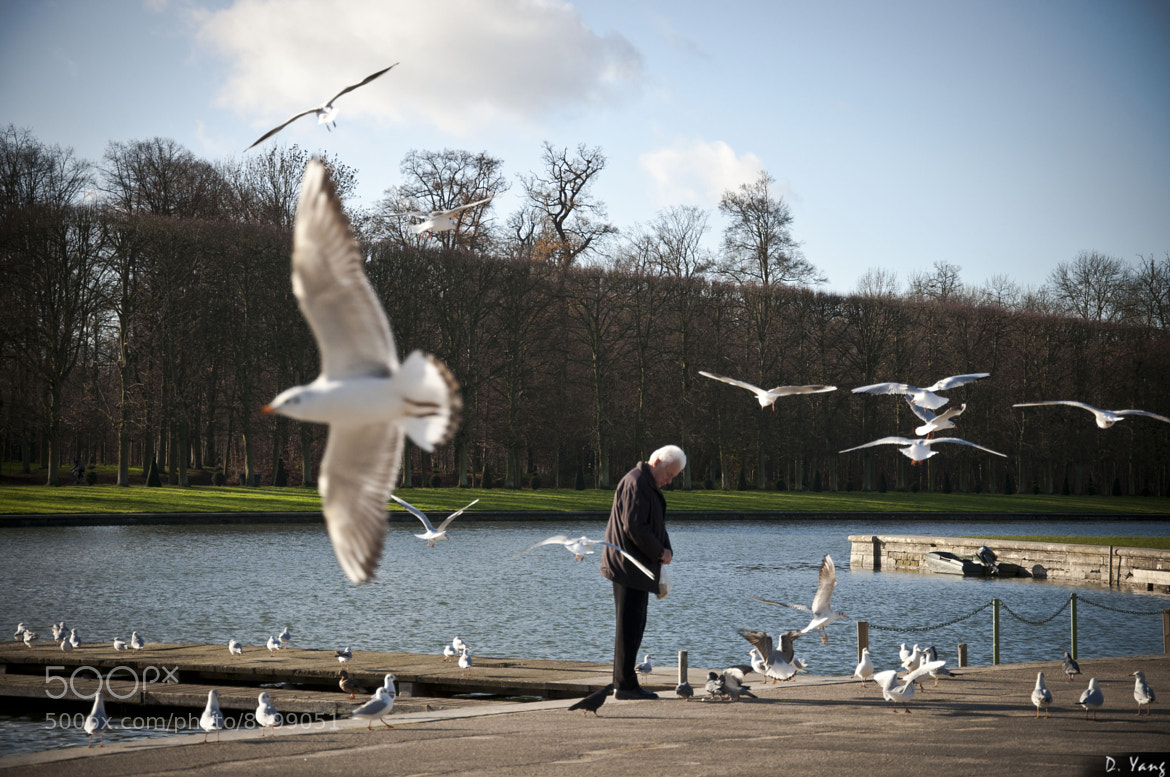 Photograph A man feeding the birds by David Yang on 500px