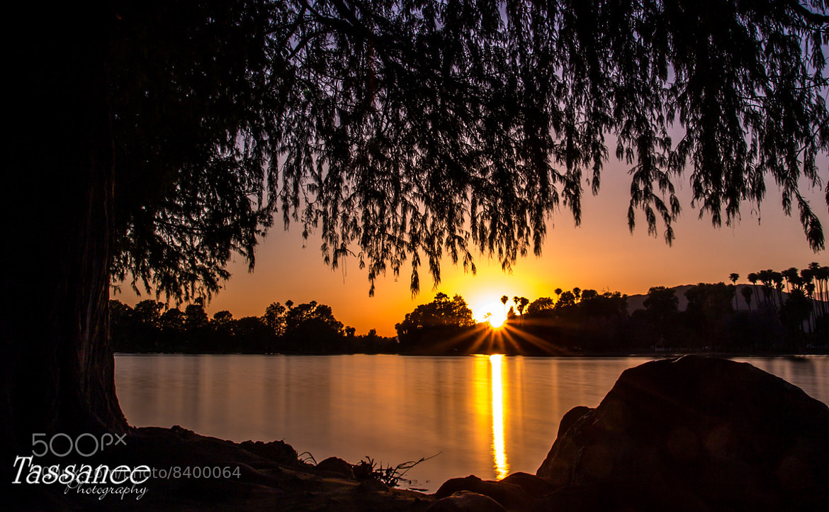 Photograph Sun Down by Tassanee Angiolillo on 500px