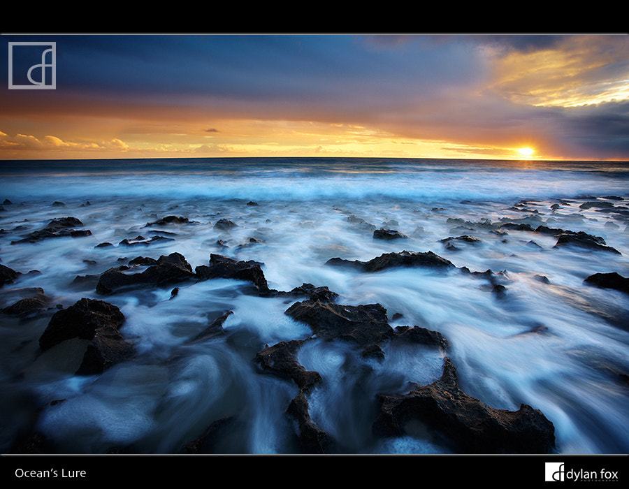Photograph Ocean's Lure by Dylan Fox on 500px
