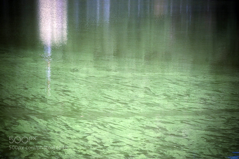 Photograph Green lake. by Anna Vesna on 500px