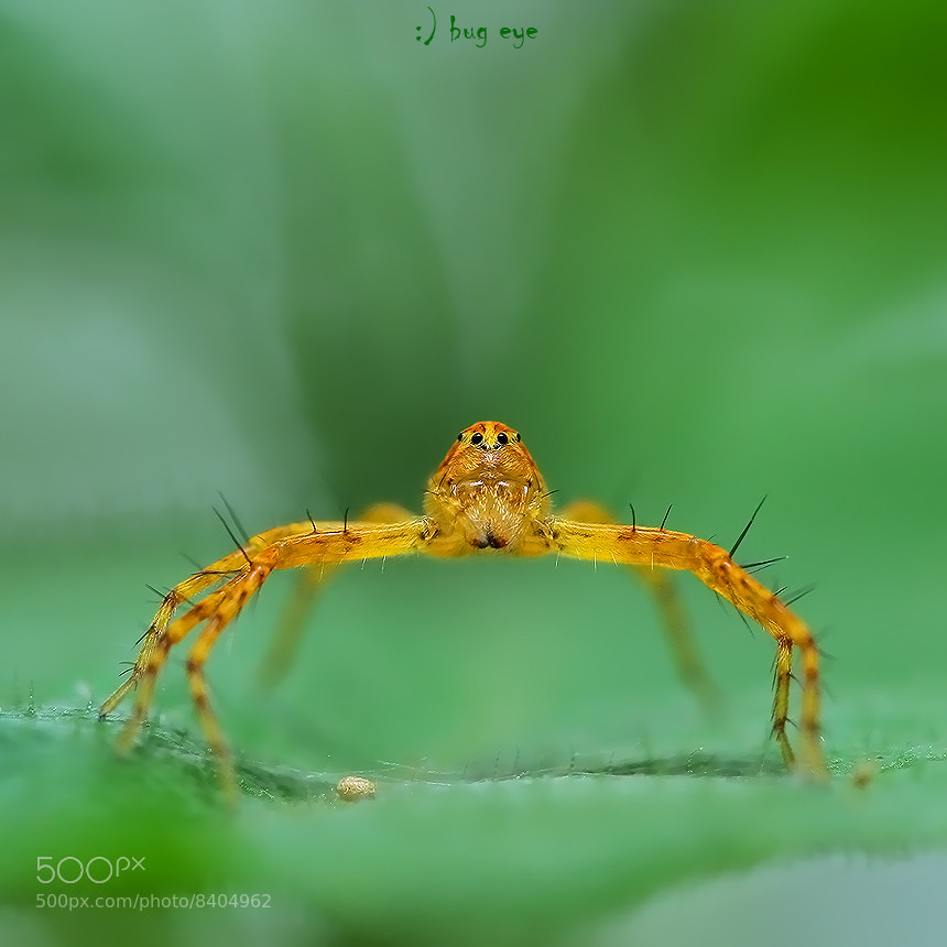 Photograph hello weekend by bug eye :) on 500px