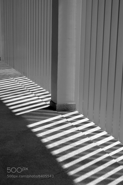 Photograph Peeping light........ by Padmakar Kappagantula on 500px
