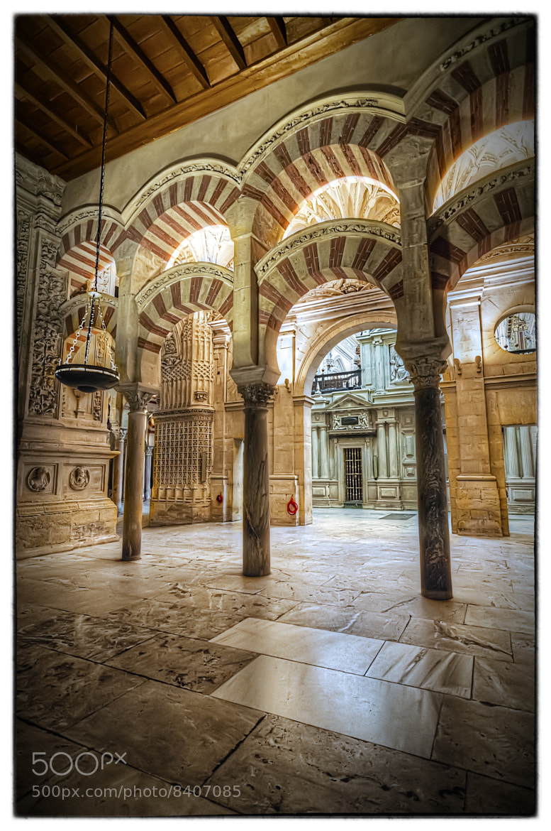 Photograph Mezquita de Córdoba by Miguel Diaz on 500px