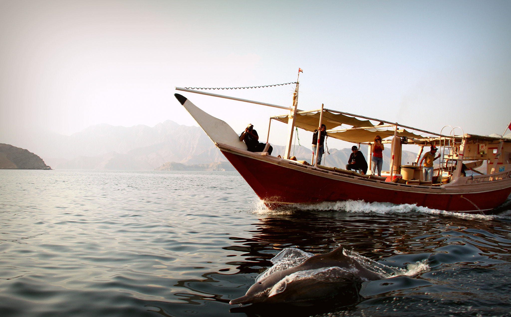 Photograph Dolphines in Oman !  by Sara Al-Balooshi  on 500px