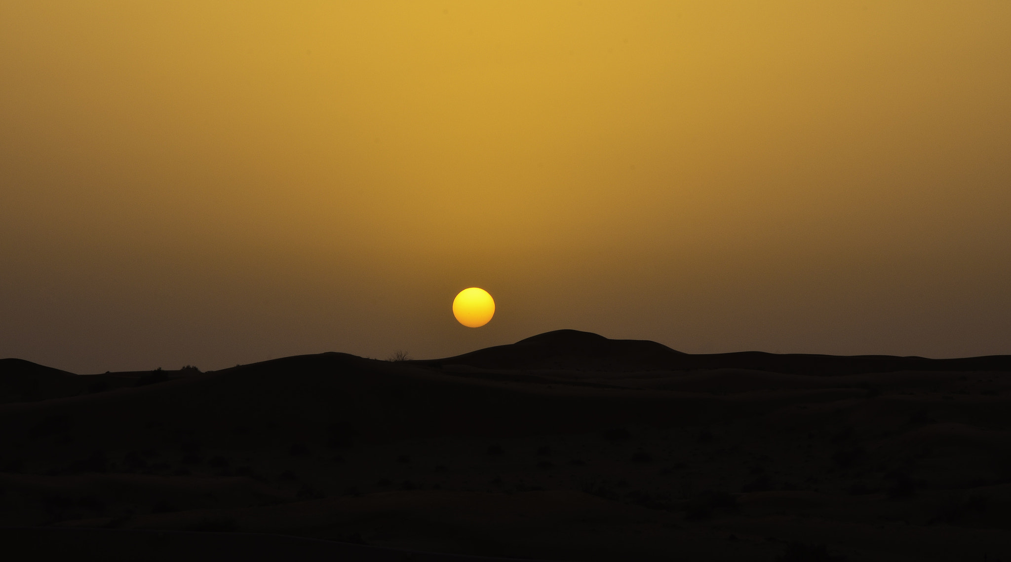 Photograph Desert Sunset by Barry Lang on 500px