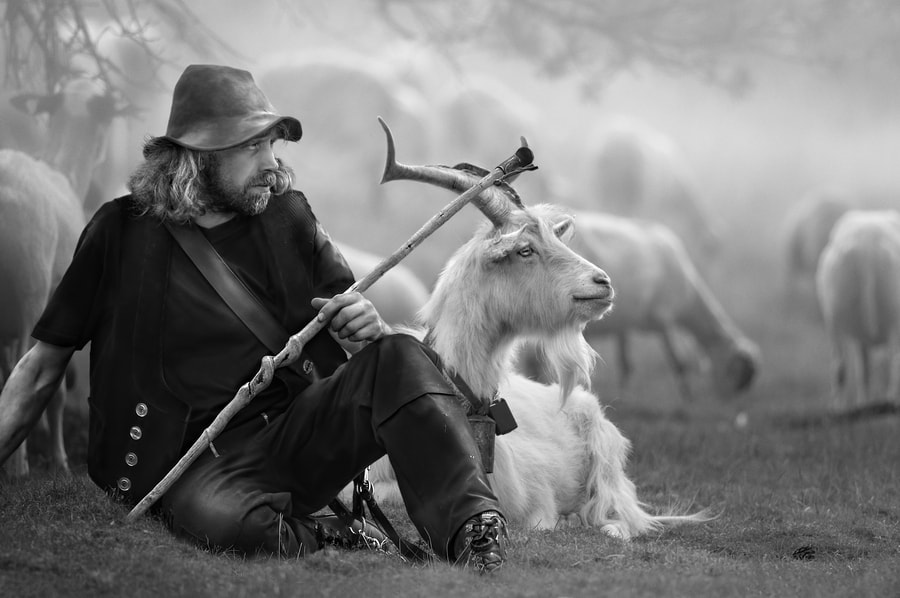 Photograph The Shepherd by Jeannette  Oerlemans on 500px