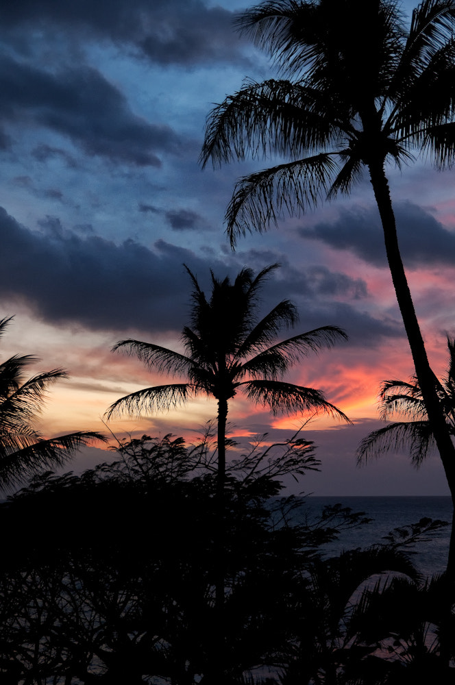 Photograph Sultry Sunset by Phil Pippo on 500px