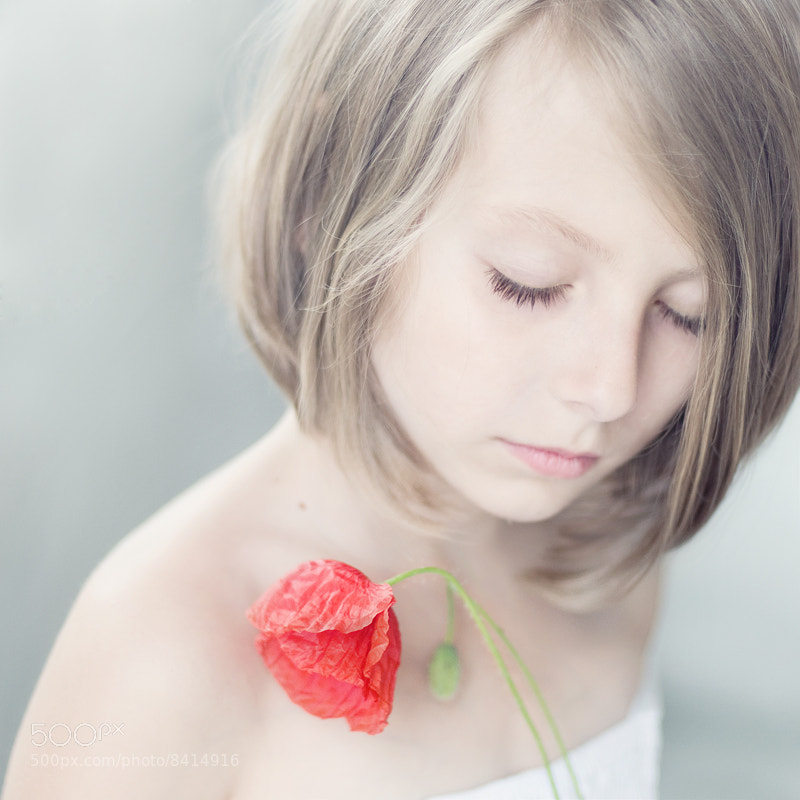 Photograph softly by Magdalena Berny on 500px