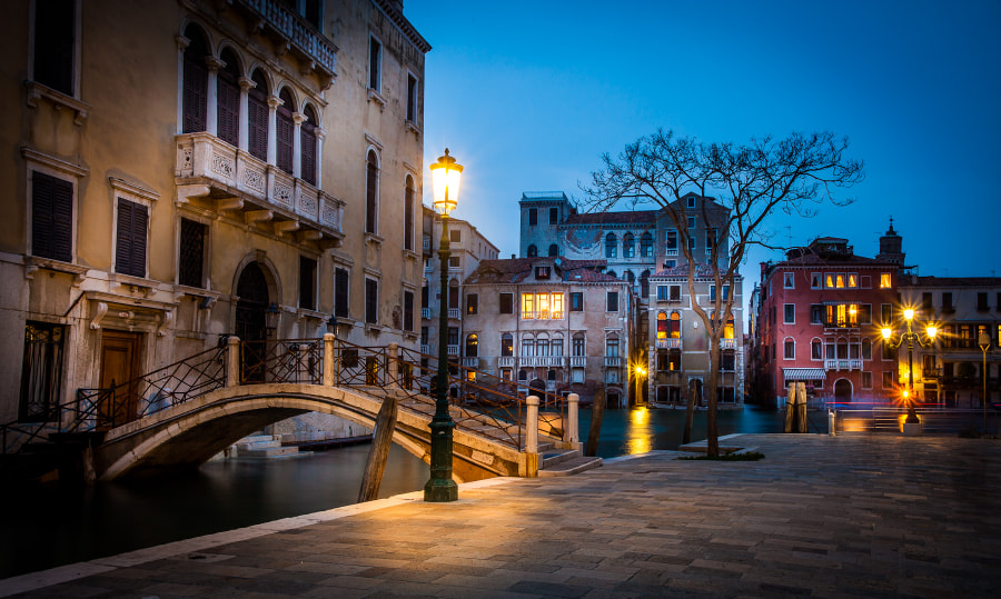 The Venise small Plaza