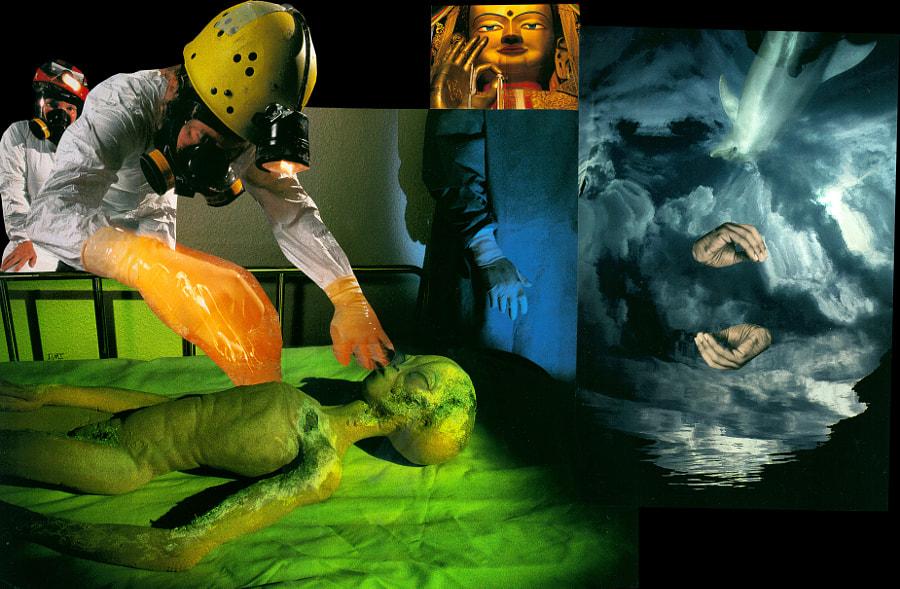 Human Alien Artefakt by iuri x