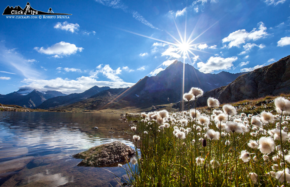 Photograph Against the sun by Roberto Sysa Moiola on 500px