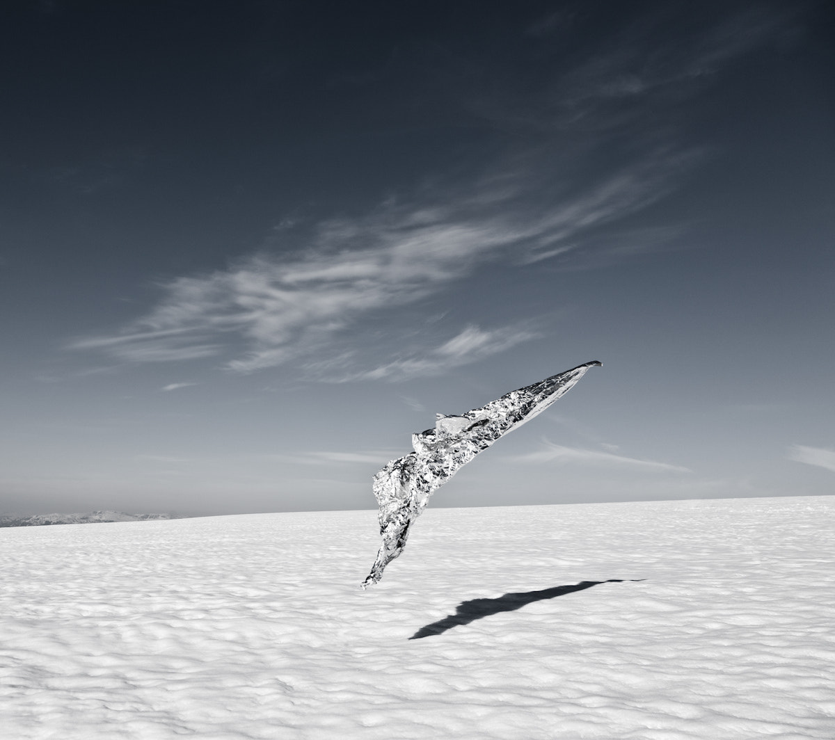Photograph The silver bird by audun nygaard on 500px