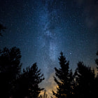 Постер, плакат: Milky Way over the Forest