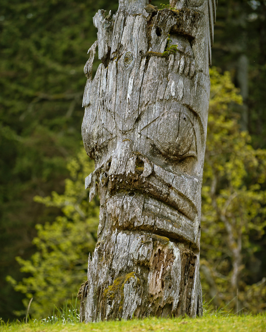 Photograph Sgan Gwaii by Spencer Robertson on 500px