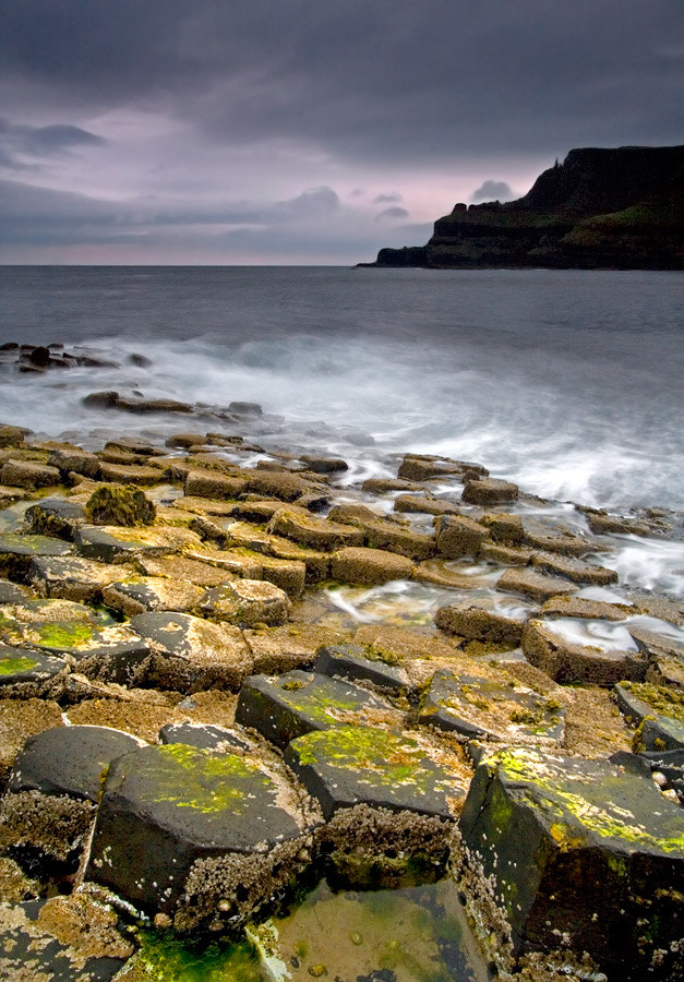 Photograph Causeway Gold by Stephen Emerson on 500px