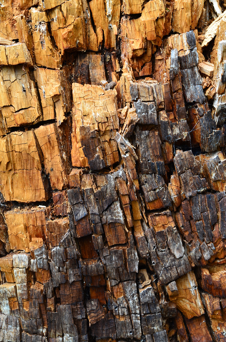 Photograph weathered wood by helmut flatscher on 500px