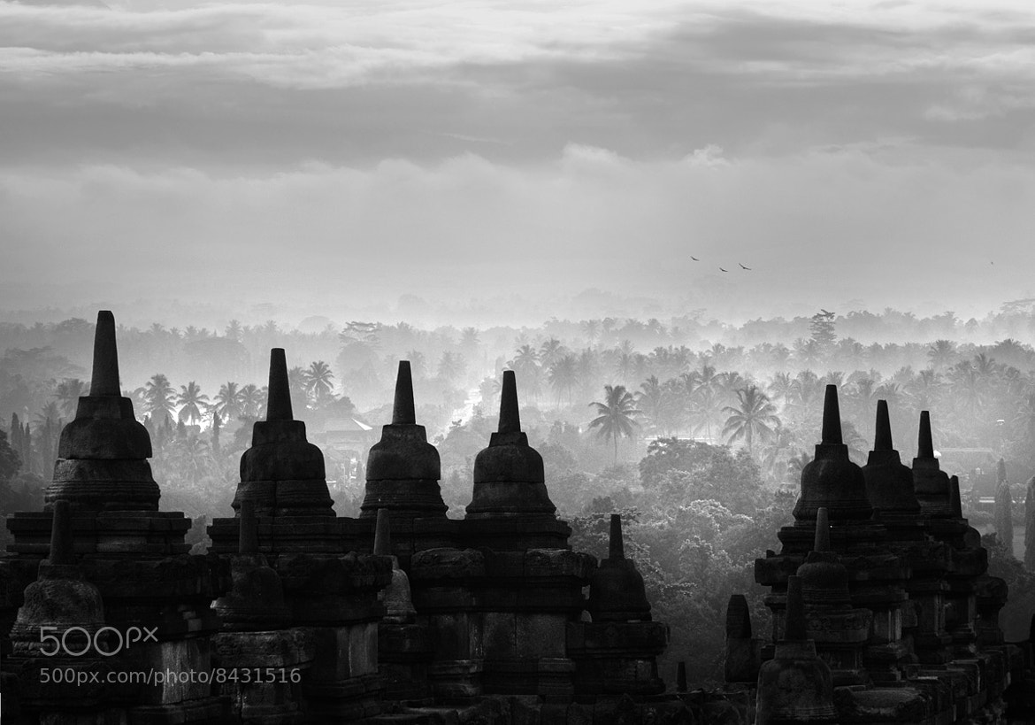 Photograph Borobudur temple by Saelan Wangsa on 500px