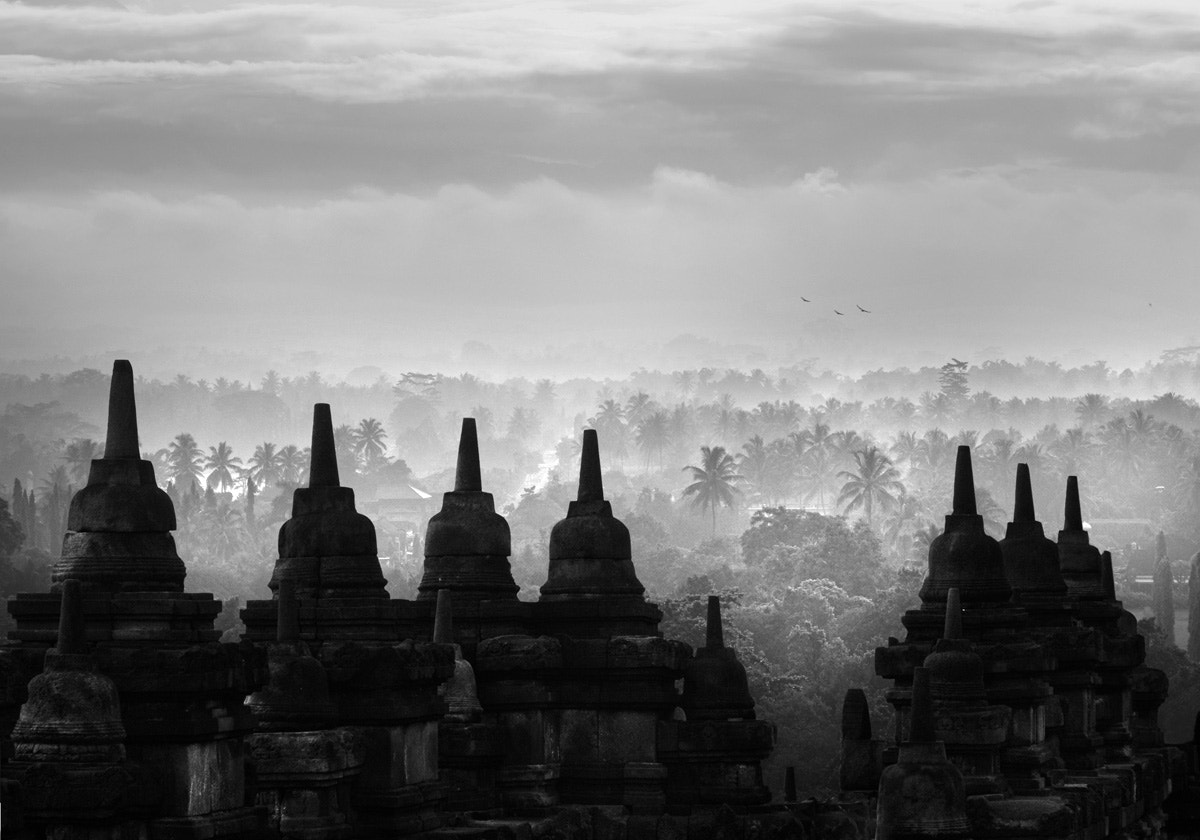 Photograph Borobudur temple by Saelanwangsa  on 500px
