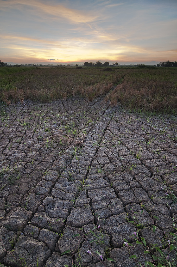 Photograph PARCHED PLAYGROUND by Olive Diane Baldago-Faustino on 500px