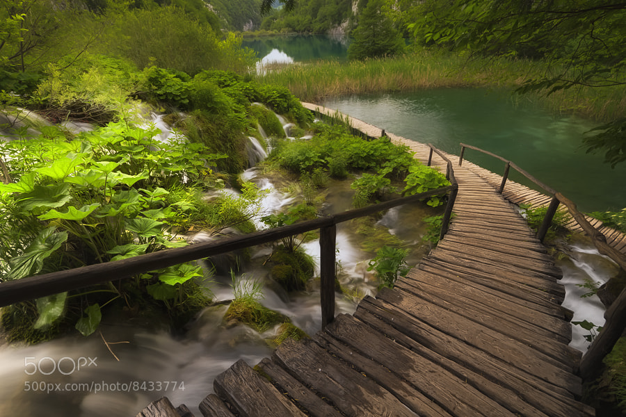 Photograph Plitvice by Ivan Prebeg on 500px