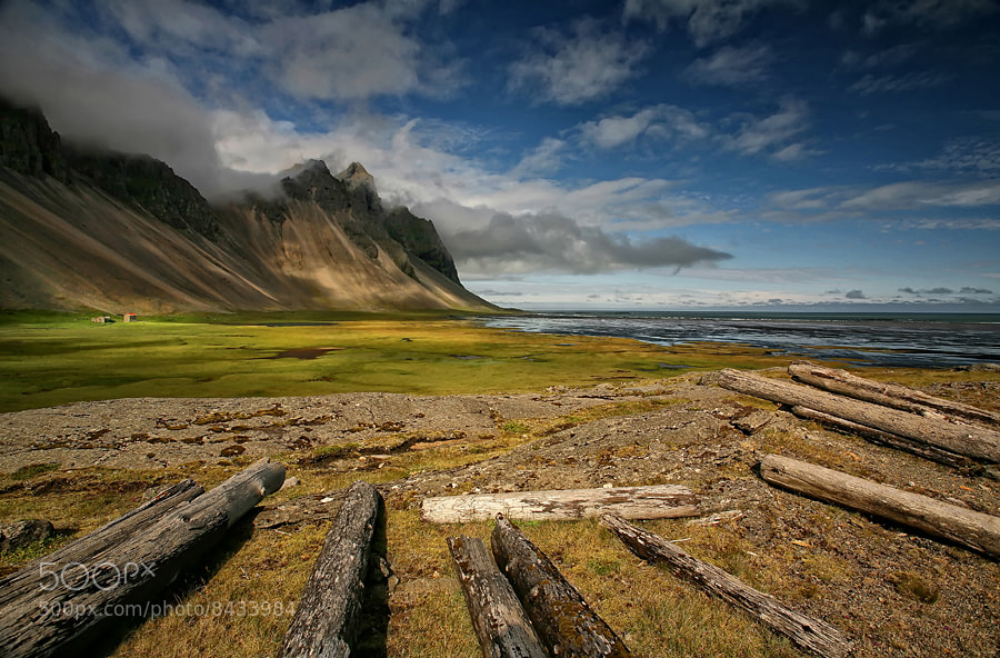 Photograph Driftwood by Þorsteinn H Ingibergsson on 500px