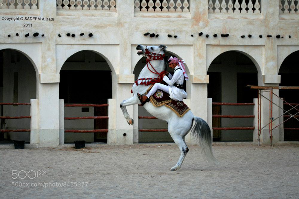 Photograph ِEquestrian .. by SADEEM ALBadr on 500px