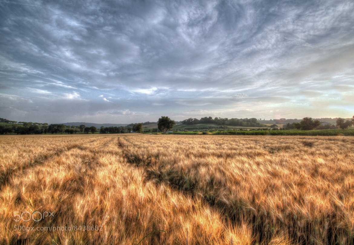 Photograph COUNTRY SIDE by Alessandro Bergamin on 500px