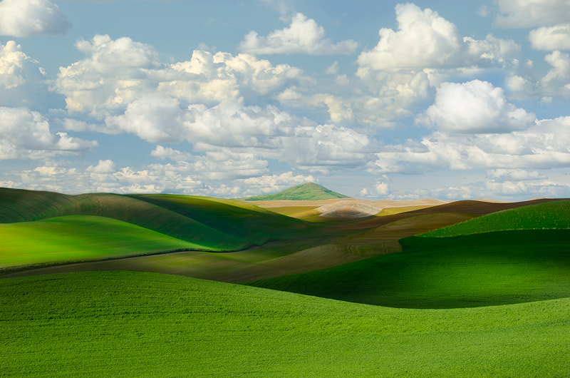 Photograph Palouse Waves by Nagesh Mahadev on 500px