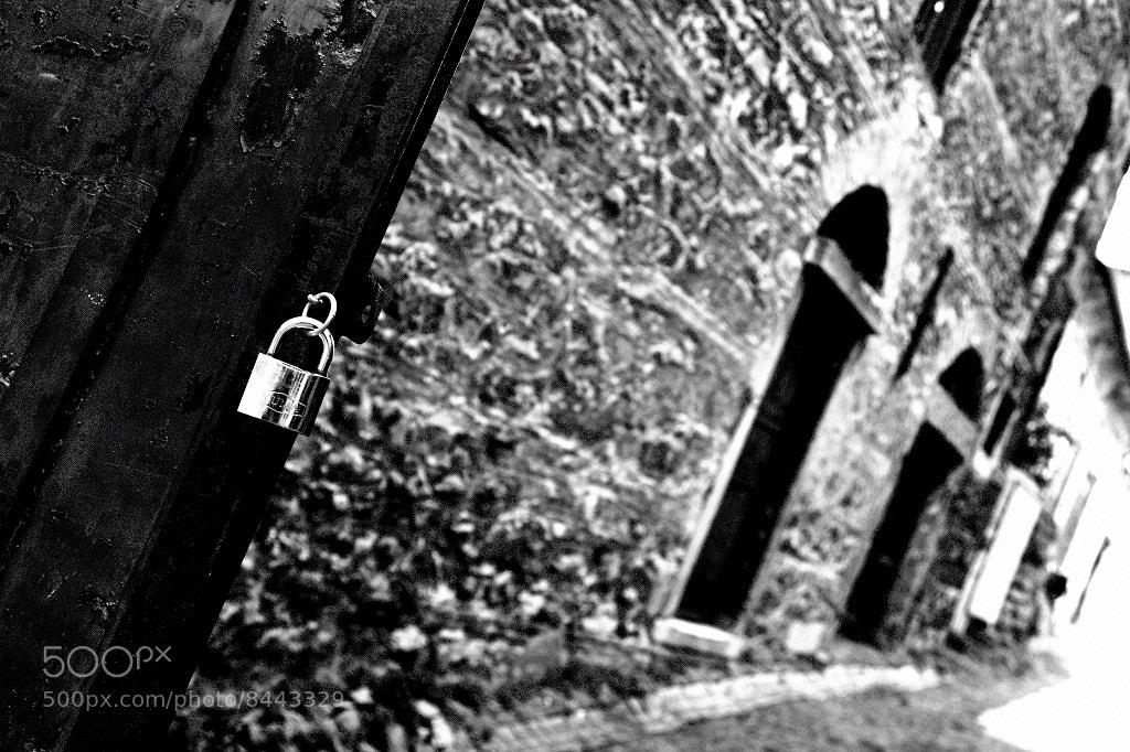 Photograph Untitled by Onur Çımrın on 500px