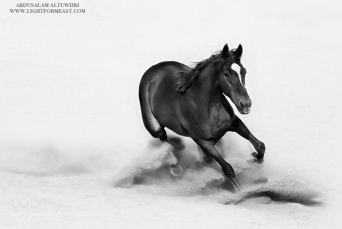 Photograph RETREAT by Abdusalam AlTuwijri on 500px