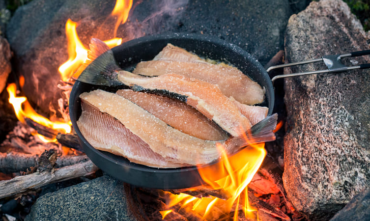 Cooking Brown trout with Campfire by Heather Balmain on 500px