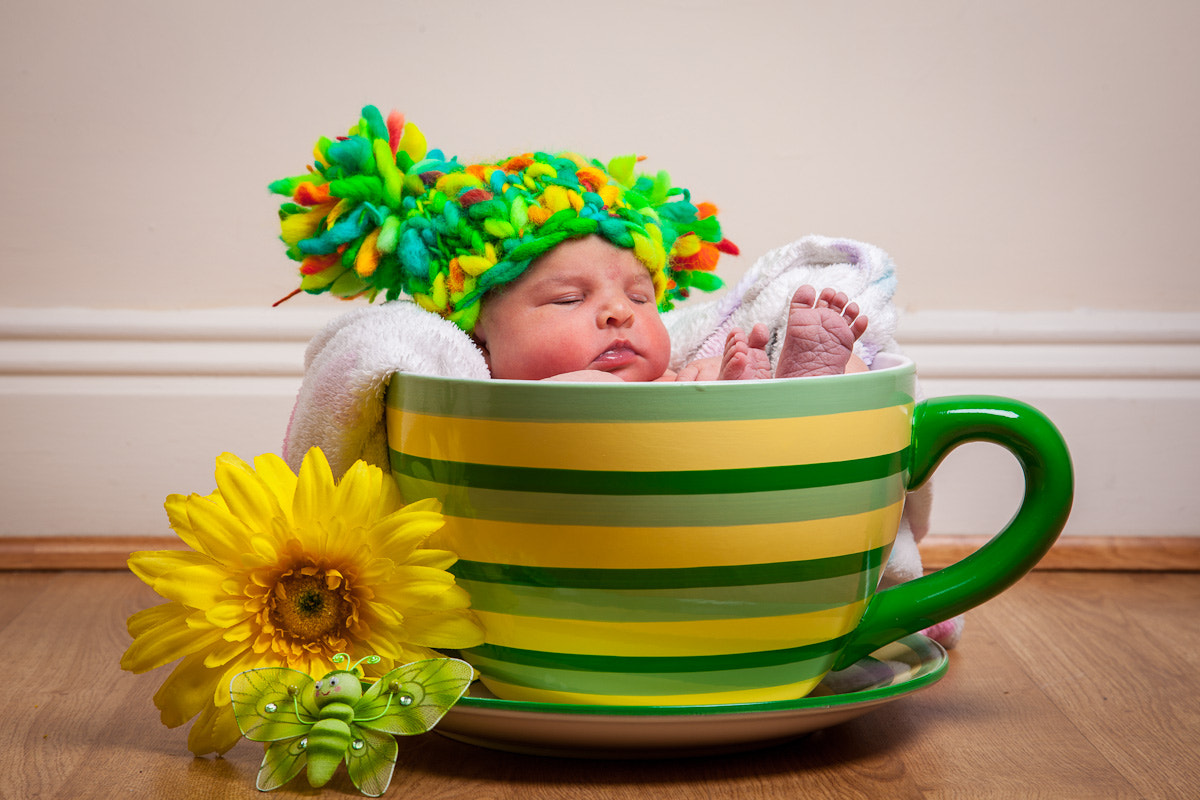 Photograph 1 Day old, time for a cuppa by Richard Swaffield on 500px