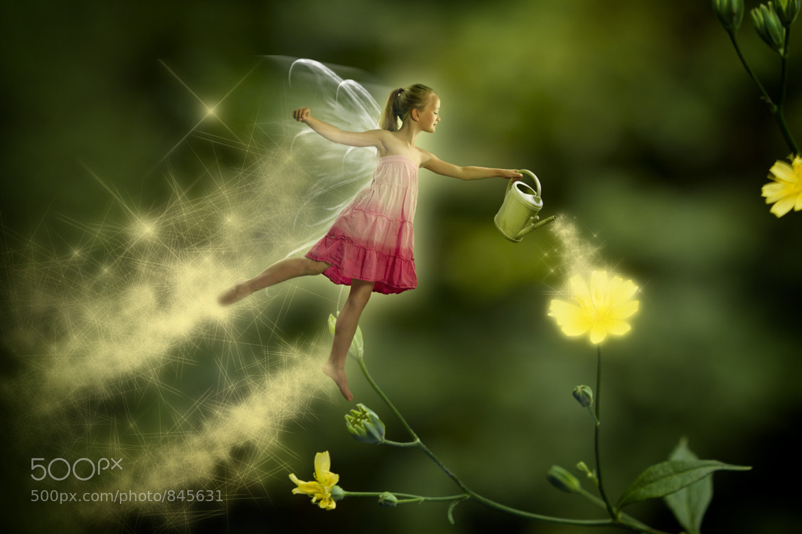 Photograph Magic Fairy by Ben Lauwers on 500px