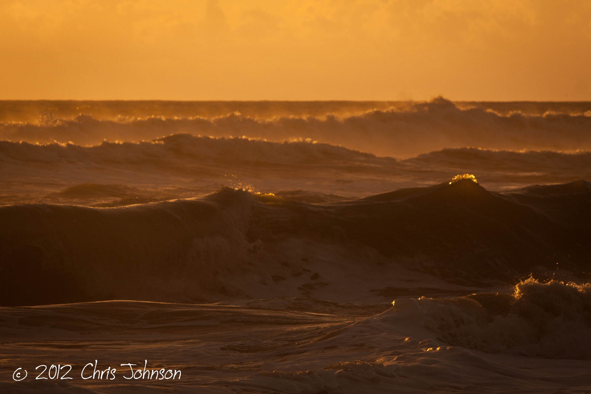 Photograph Golden sea by Chris Johnson on 500px