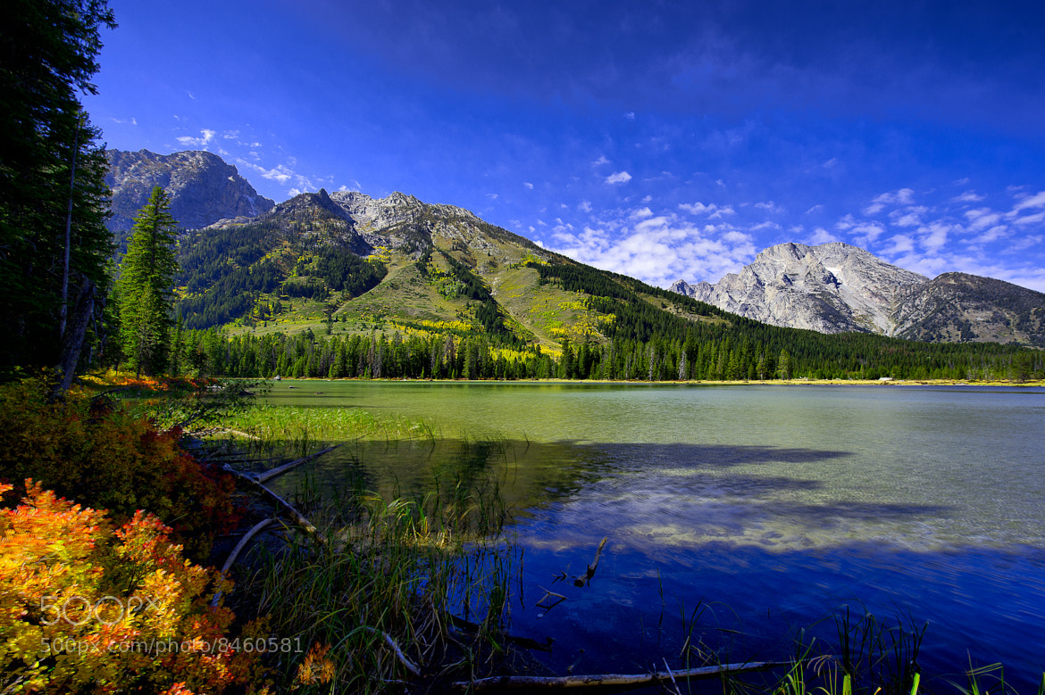 Photograph String Lake - Summer 2010 by Wil Bloodworth on 500px