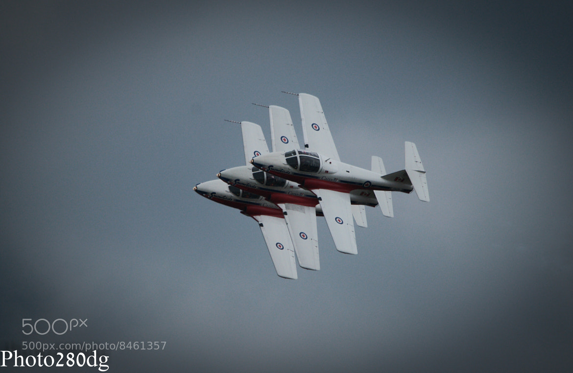 Photograph Snowbirds in three by Paul Wyatt on 500px