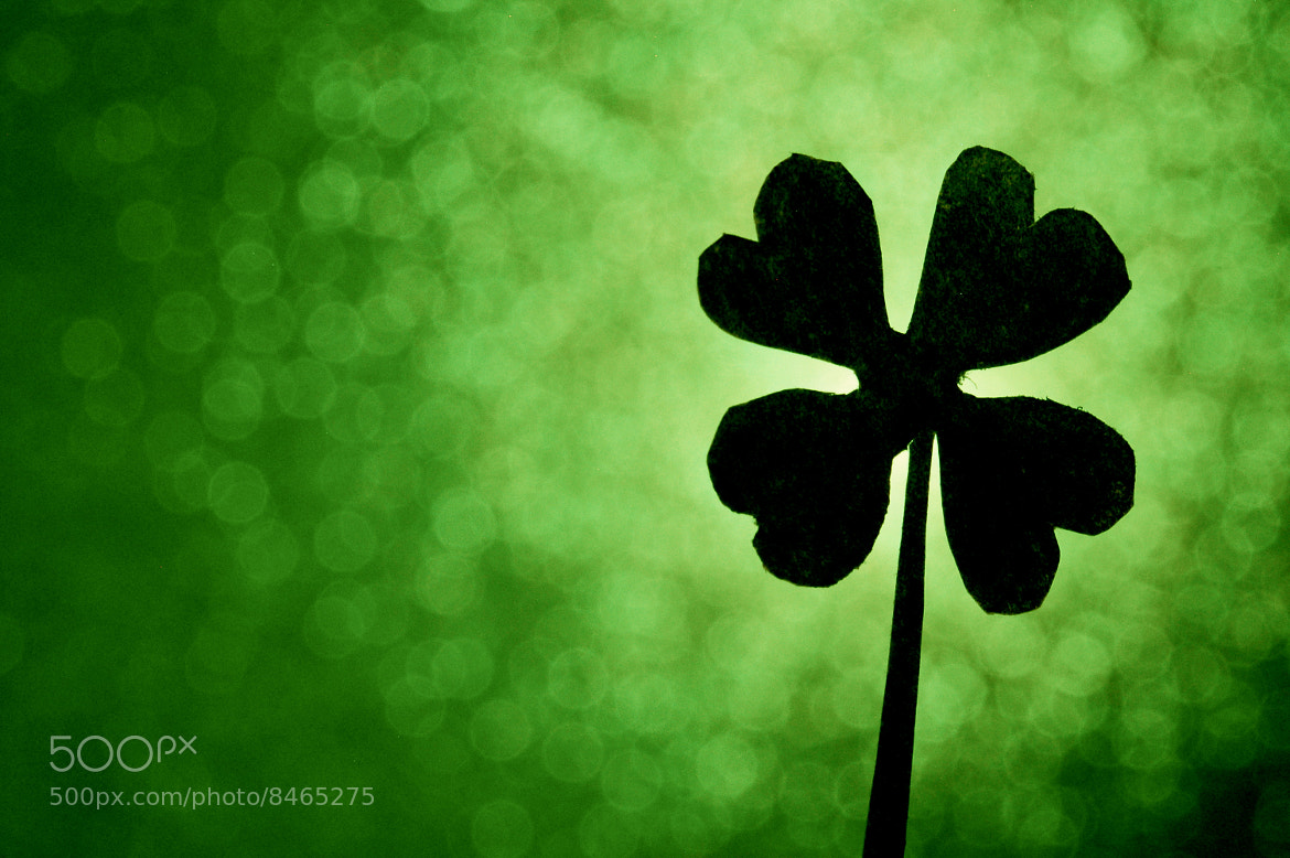 Lucky To Be Irish - cover