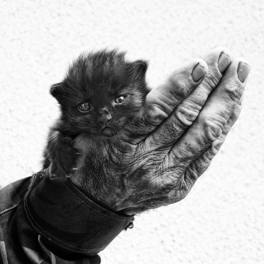 Photograph A Handful of Happiness  (First steps) by Silvia S. on 500px